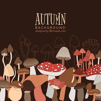 Autumn background with mushrooms
