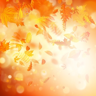 Autumn background with natural leaves and bright sunlight.