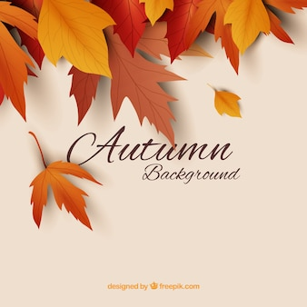 Autumn background with realistic leaves