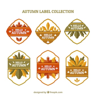 Autumn badge collection with flat design