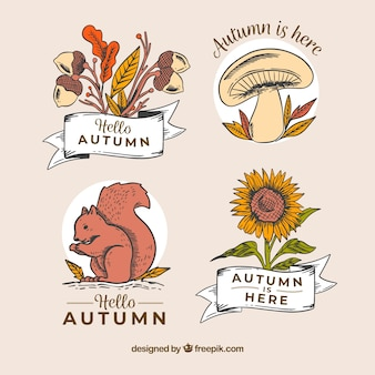 Autumn badges collection in hand drawn style