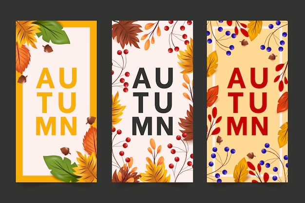 Pacchetto banner autunnale