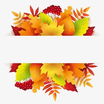 Осенний баннер с осенними листьями, ягодами и белым фоном для текста
