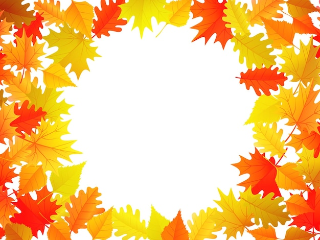 중앙에 카피스페이스가 있는 화려한 단풍이 있는 가을 배너