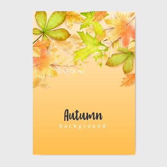 Autumn banner with colorful autumn leaves background