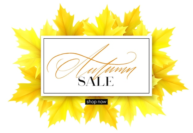 Autumn banner with lettering and yellow autumn maple leaves
