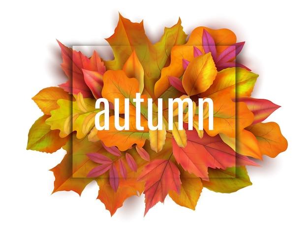 秋のバナー