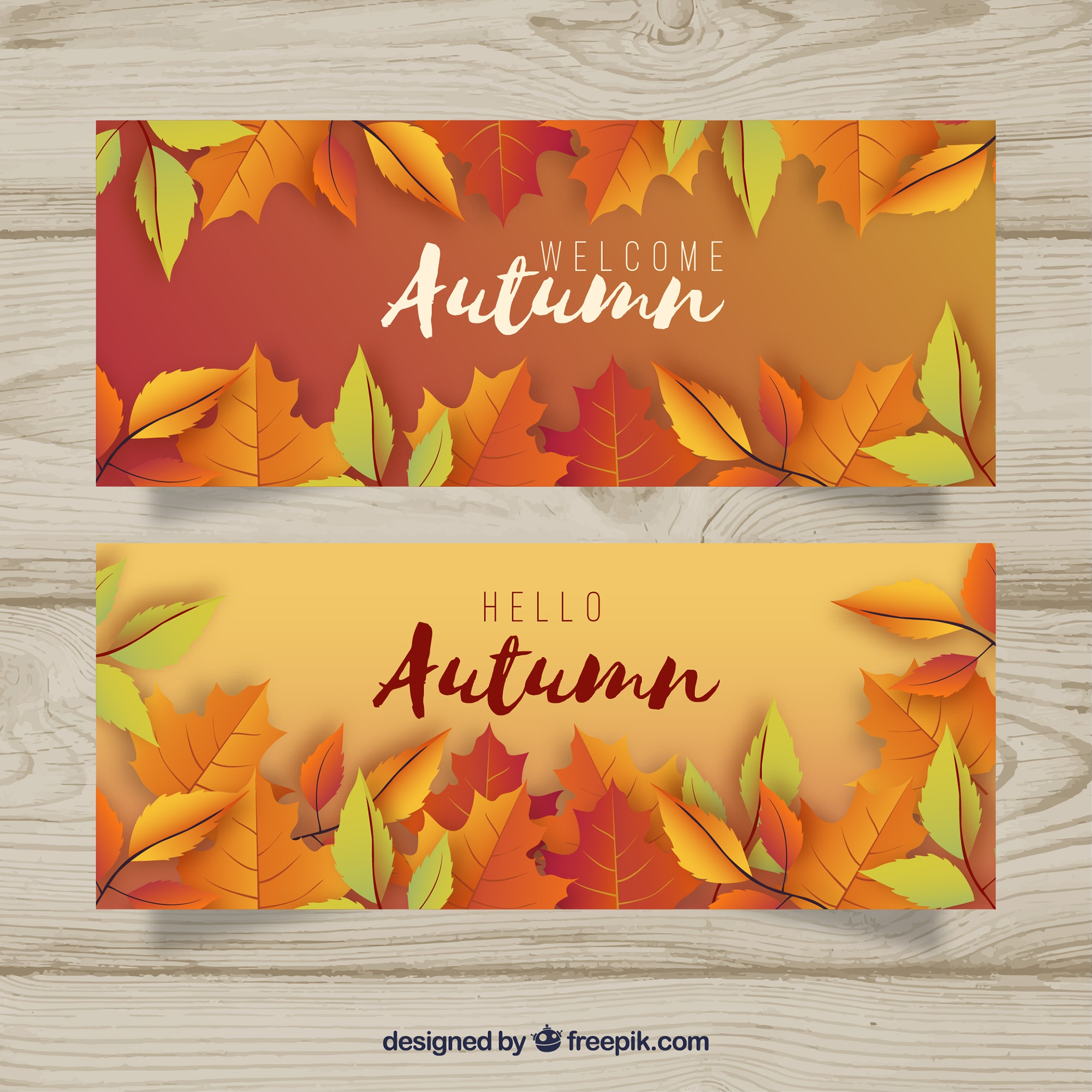 Autumn banners with colorful leaves