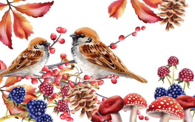 Autumn birds sitting on red berries branch
