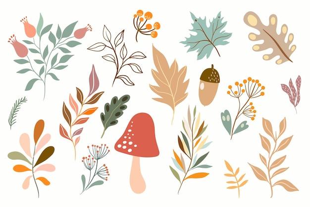 Autumn botanical collection with seasonal plants arrangement
