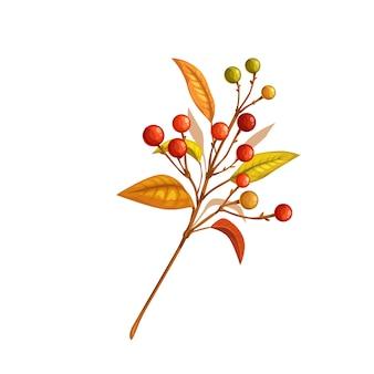 Осенняя ветка с ягодами, изолированные на белом фоне