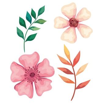 葉と花のイラストと秋の枝