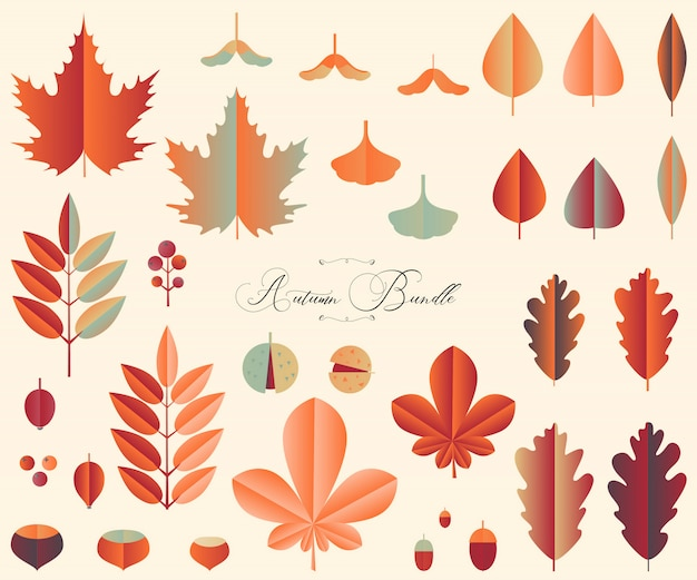 Autumn bundle of leaves and fruits in papercut style