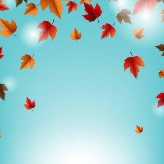 Autumn card with leaves and blue background