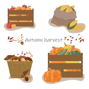 Осенняя коллекция элементов для вашего дизайна с тыквами, листьями, овощами, кукурузой. концепция осеннего урожая.