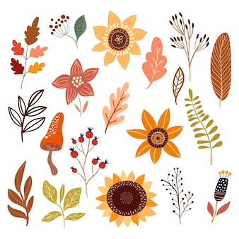 Autumn collection with botanicals differents plants and leaves flowers