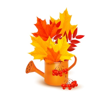 Autumn colorful leaves growing in a watering can.  .