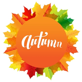 Autumn composition with speech bubble and text
