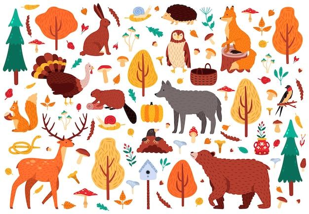 가을 귀여운 동물. 야생 손으로 그린 곰 너구리 여우와 사슴 캐릭터, 삼림 지대 조류와 동물 그림 아이콘을 설정합니다. 숲의 새와 곰, 가을 사슴과 숲 여우