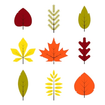 秋の別の葉がフラットスタイルに設定します。赤、緑、黄色、オレンジの葉が白い背景で隔離。メープル、スプルース、オーク、ナナカマド、白樺の紅葉-イラスト
