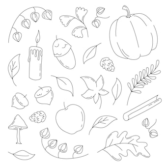 Autumn elements in hand drawn doodle style with pumpkin, acorn, leaves, candle and cinnamon