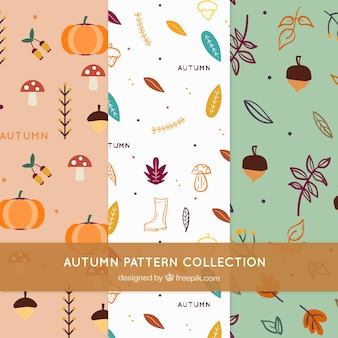 Autumn elements pattern