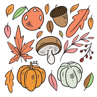 Autumn elements set leaves pumpkin apple line art colorful style hand drawn sketch doodle