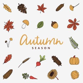 Autumn fall season with leaves
