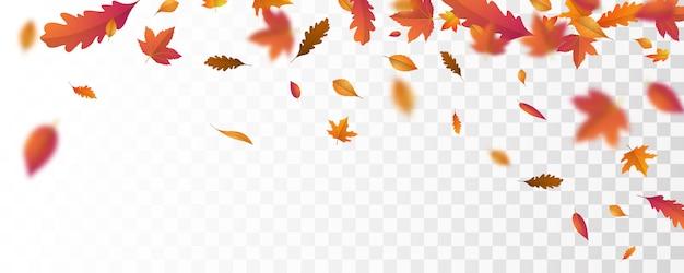 秋の落ち葉の背景ベクトルテンプレート。