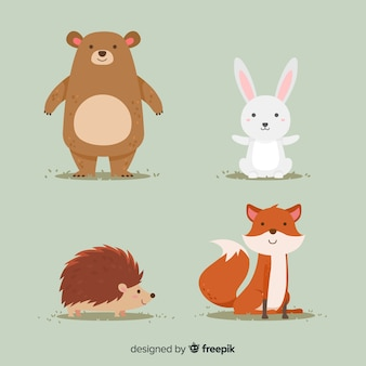 Autumn forest animals flat design