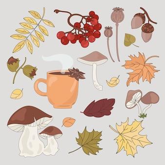 秋の森の要素のコレクション