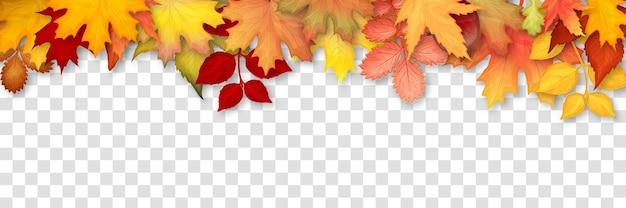 Осенняя рамка с разноцветными листьями на прозрачном фоне. векторная иллюстрация