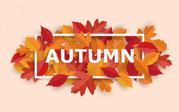 Autumn frame with leaves banner
