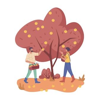 リンゴを摘んだり摘んだりする秋の庭の人々