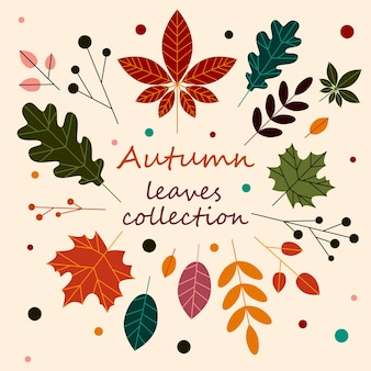 秋の手描きの葉ベクトルセット秋の季節の葉ステッカーパック
