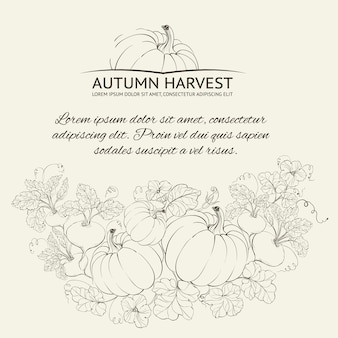Autumn harvest background