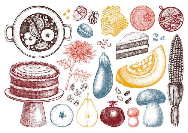 秋の収穫祭の要素のコレクション。伝統的な感謝祭のイラスト。自家製の食べ物や飲み物のスケッチ。手描きの野菜、果物、花。
