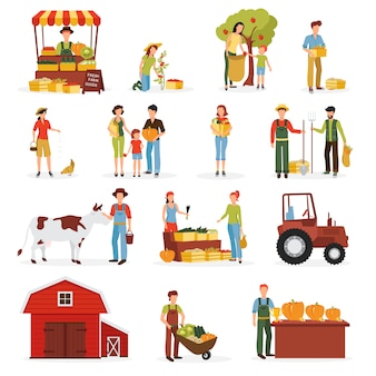 Autumn harvest time on farm flat icons collection
