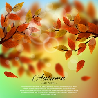 Autumn illustration background template