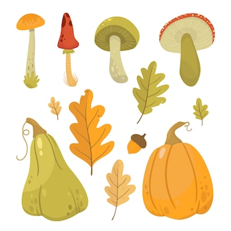 Autumn   illustration set with mushrooms and pumpkins.