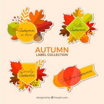 Autumn labels collection in flat style