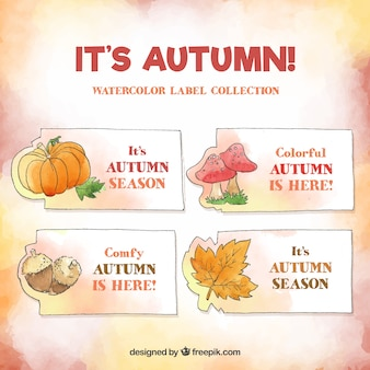Autumn labels collection in watercolor style