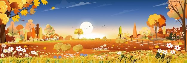 Осенний пейзаж на поле фермы урожая
