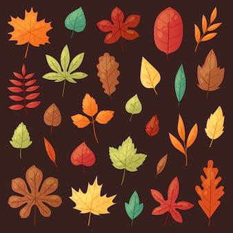 秋の紅葉倒れた木から落ちる紅葉は、オークと緑豊かなカエデの葉や葉のイラストを葉します。