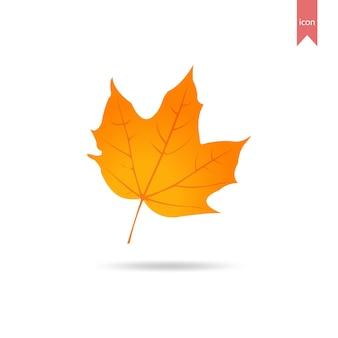 Autumn leaf element design template
