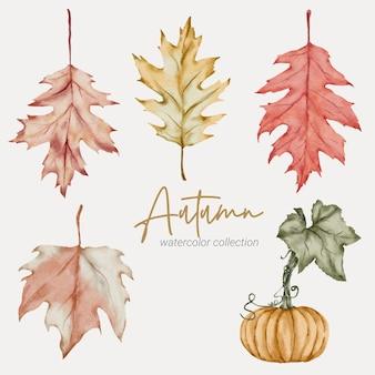 Осенний лист акварельной коллекции