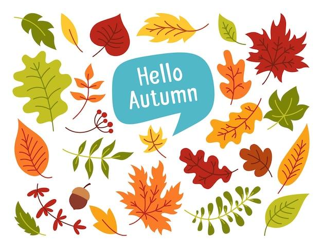 Осенние листья и ягоды рисованной красочный модный мультяшный набор