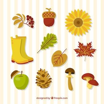 Осенние листья и сапоги