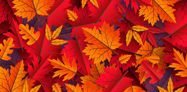 Autumn leaves background design