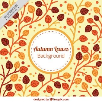 Осенние листья фон в теплых тонах